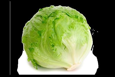 Iceberg Lettuce image