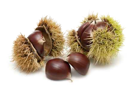 Chestnuts image